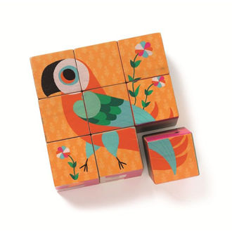 Picture of Bird Cube Puzzle
